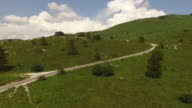 Beautiful grassy landscape with trees video
