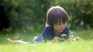 Beautiful happy child, boy, exploring nature with magnifying glass, summertime video
