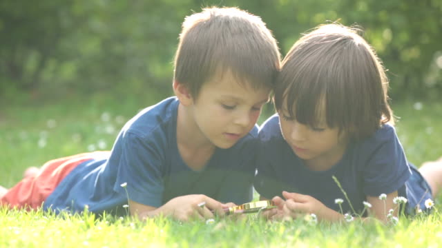 Beautiful happy children, boy brothers, exploring nature with magnifying glass, summertime video