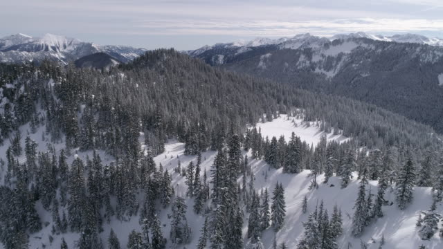 Beautiful Helicopter Scenic View of Cascade Mountain Range with Fresh Powder Snow on Forest Trees video