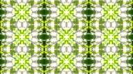 Beautiful kaleidoscopic pattern of green foliage. video