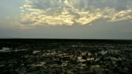 Beautiful landscape of the ocean and beach with green seagrass while low tide video