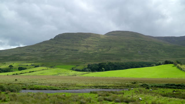 Beautiful landscape view of the green pasture Ireland video
