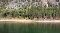Beautiful Large Mountain River and Pine Forest Shoreline video