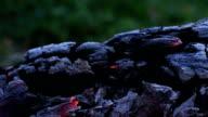 Beautiful log smoldering in fire video