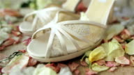 Beautiful luxury pair of high heels white bridal shoes lace sandals standing on carpet with rose flowers petals around waiting for bride on her wedding day. Macro close-up. Dolly video