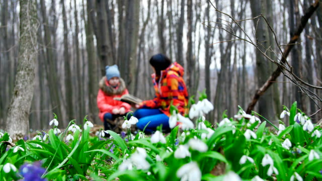 Beautiful mother and cute daughter are reading an interesting book in a spring forest full of blossoming snowdrops video
