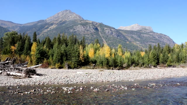 Beautiful Mountain River and Fall Colors video