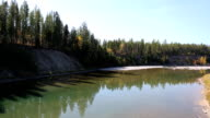 Beautiful Mountain River in Forest video