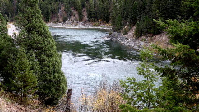 Beautiful Mountain River in Idaho video