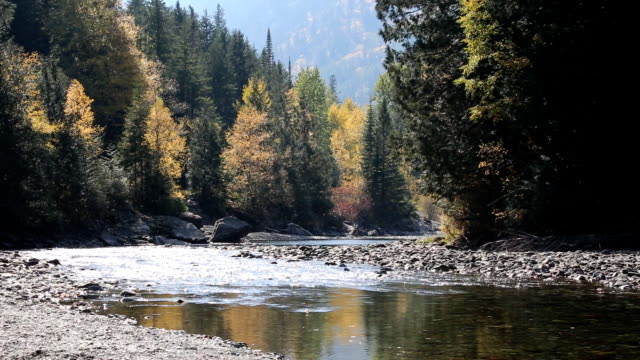 Beautiful Mountain River With Fall Colors video