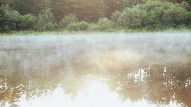 Beautiful nature landscape in the forest. The fog, white smoke over the water, calm lake video