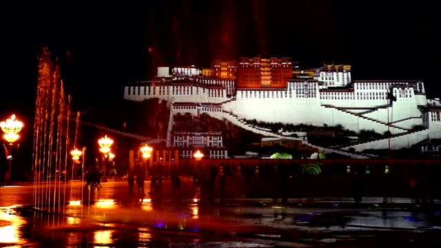 Beautiful night scenery of the Potala palace video