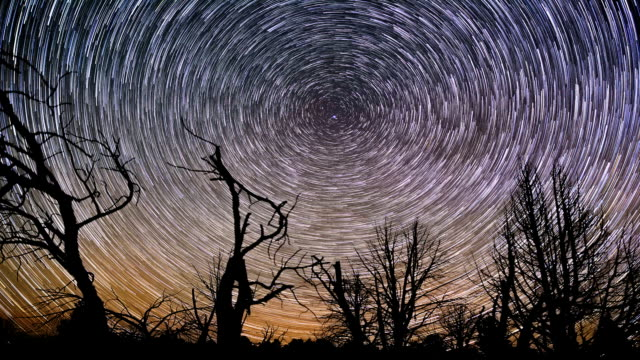 Beautiful night star trails spin around north star over forest timelapse video