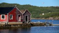 Beautiful Norway, bouthouses and seagulls HD video