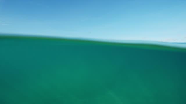 Beautiful Ocean Above and Bellow Split View video