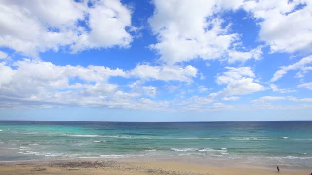 Beautiful Ocean Seascape, HD Video video