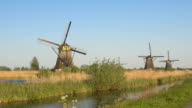 AERIAL: Beautiful old traditional Dutch windmills on field on sunny spring day video