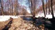 Beautiful river in the spring forest, Bashkortostan Russia video