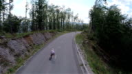 AERIAL: Beautiful road with spruce forest skater riding through video