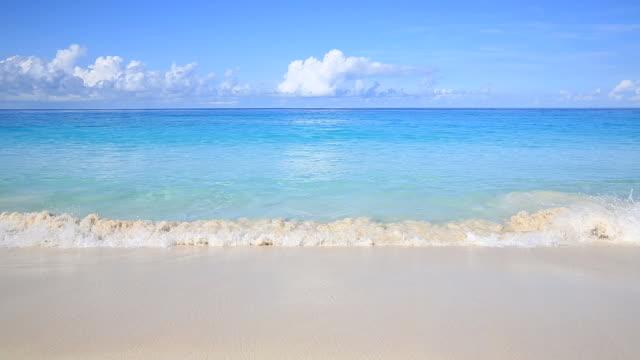 Beautiful sandy beach video