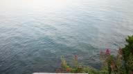 beautiful sea video