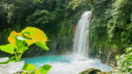 T/L Beautiful shot of Guanacaste waterfall in 8K video