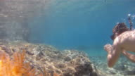 HD SLOW MOTION: Beautiful Snorkeling In Shallow Water video