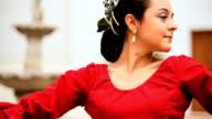 Beautiful Spanish Flamenco Dancer video