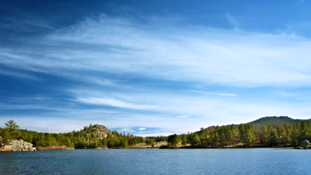 Beautiful summer landscape on the lake video