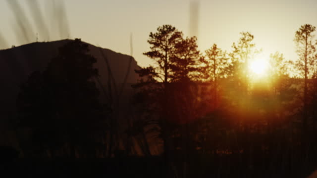 Beautiful summer sunset in the mountains of Colorado with places of grass coming into focus. Originally shot on Red Dragon in 6K. video