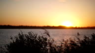 Beautiful sunset by the river. Sunset in the countryside video