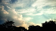 Beautiful sunset video