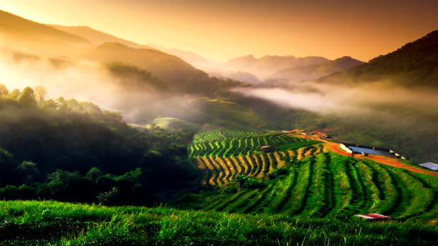 Beautiful sunshine at misty morning mountains at north thailand timelapse video