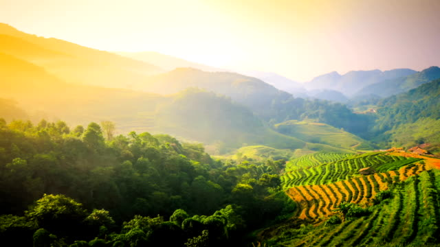 Beautiful sunshine at misty morning mountains at north thailand video