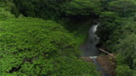 AERIAL: Beautiful tall cascade splashing over rocky wall in amazing lush jungle video