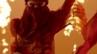 Beautiful Traditional Oriental Belly Dancer. Slow Motion . video