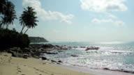 Beautiful tropical beach in Sri Lanka video