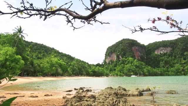 Beautiful tropical beach video