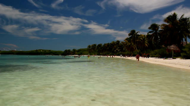 Beautiful Tropical Desert Island with palm trees and beach video