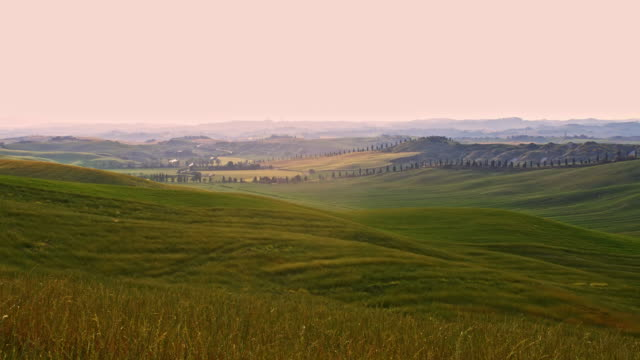 DS Beautiful Tuscan countryside in wind video