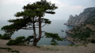 Beautiful view of Blue bay from cape Kapchik in Crimea video