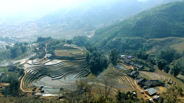 Beautiful view of the rice terraces video
