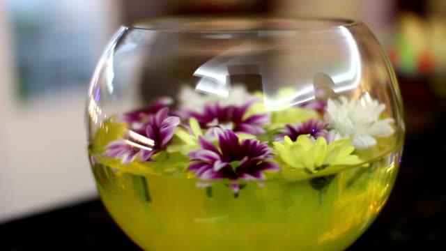 beautiful views of the flowers  in aquarium video
