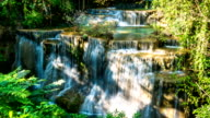 Beautiful Waterfall with Cascade Step in Deep Forest. video