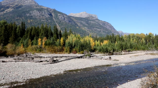 Beautiful Wild Mountain River video