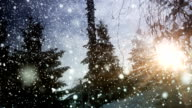Beautiful winter with sun loop video