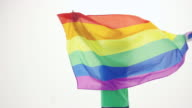 Beautiful young adult female spinning around with the gay pride flag isolated against a white background video