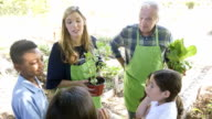 Beautiful young female gardener reviews plant facts with elementary students on a field trip video