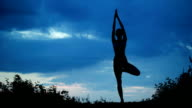 Beautiful young healthy woman doing yoga exercise video